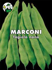 fagiolo nano mangiatutto Marconi