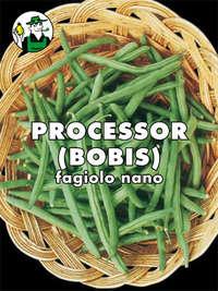 fagiolo nano mangiatutto Processor o Bobis