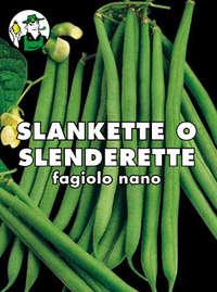fagiolo nano mangiatutto Slankette o Slenderette