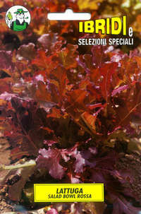 lattuga Salad Bowl rossa
