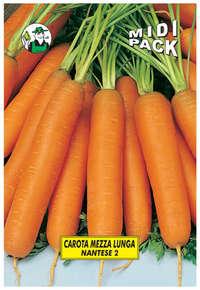 carota Nantese 2